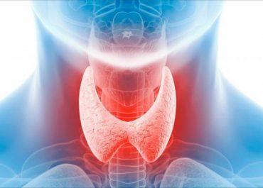 Обследование щитовидной железы в мед. центре НеоМед в Анапе